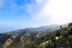 Luftbild von Terrassenfeldern im Nationalpark Garajonay auf La Gomera, Spanien