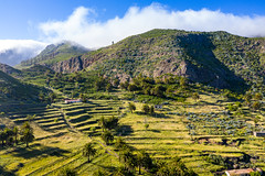 Terrassenfelder in Vegaipala auf La Gomera, Spanien