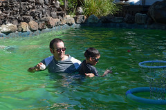 DSC_0024 (rlnv) Tags: california bayarea nikond3300 1855mmf3556gvrii birthday sunnyvale pool tomás nick