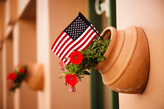 Flag [Day 3848] (brianjmatis) Tags: patriotic usa flag photoaday wall america flowers unitedstates project365 sanluisobispo california unitedstatesofamerica