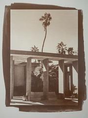 Desert Hot Springs (aweiss.sf) Tags: 5222 alternativeprocess altpro analog analogphotography analogue architecture blackwhite brownprint california coachella coachellavalley deserthotsprings doublex eastman film filmisnotdead ishootfilm kodak olympus palmsprings palmtree penft vandyke
