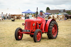 July challenge 85mm (s.pither) Tags: show liskeard tractor dude