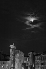 (ale_brando) Tags: roma romebynight rome largoditorreargentina areasacra moonlight moon columns romantemples temple blackwhite monochrome nightphotography night niksoftware nikonfx silverefexpro fx mono d700