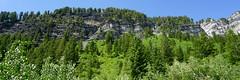DSC02769 (Aubrey Sun) Tags: ut utah hike mountain uintas
