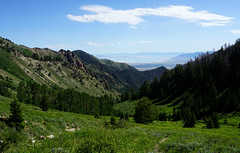 DSC02794 (Aubrey Sun) Tags: ut utah hike mountain wasatch