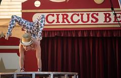 Circus Bella (Tom Holub) Tags: oakland