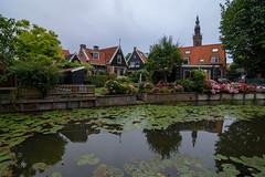 Edam (Julysha) Tags: edam town canal summer thenetherlands noordholland july waterlilies 2019 acr d7200 tokina12244 rainy