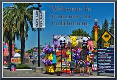 StateFair_4203 (bjarne.winkler) Tags: 2019 california state fair welcome sign