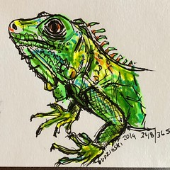 248/365 07/15/19 Lizard (Lainey1) Tags: reptile lizard green 071519 248 248365 elainedudzinski lainey1 365 doodle art sketch draw sketchoff girlzsketchy illustration abstract sketching drawing artist sketchbook graphics womensketchshit doodles doodling popart sharpies watercolor