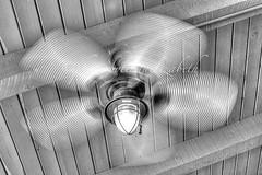 192/365 (lindaelizabeth) Tags: ceilingfan slowshutterspeed twirling blackandwhite horizontal hdr grabshot creative desperation woodenbeams roof light