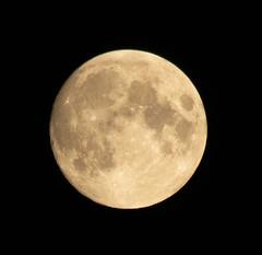 99% full Moon 15 July 2019 (Sculptor Lil) Tags: london canon700d waxinggibbous moon