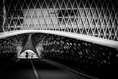 Park Bridge (tom-s) Tags: blackwhite blackandwhite monochrome bridge antwerpen street streetphotography architecture urban