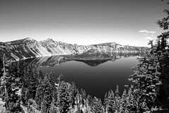 Impressions of Crater Lake: Wizard Among The Trees (g-liu) Tags: oregon crater lake nationalpark blackandwhite monochrome usa west sky water darktable sony a6500 july 2018 daylight daytime contrast reflection trees evergreen slopes caldera round island volcano partlycloudy
