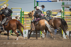Strathmore Stampede 2018 (tallhuskymike) Tags: strathmore stampede rodeo event outdoors strathmorestampede 2018 prorodeo cowboy horse horses action alberta western