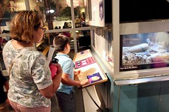 Day Trip to the California Science Center