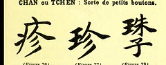This image is taken from Page 101 of Les caractères médicaux dans l'écriture chinoise (Medical Heritage Library, Inc.) Tags: chinese language medicine traditional wellcomelibrary ukmhl medicalheritagelibrary europeanlibraries date1914 idb24852752