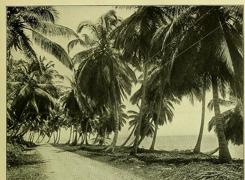This image is taken from Page 25 of The Panama Canal : an illustrated historical narrative of Panama and the great waterway which divides the American continents