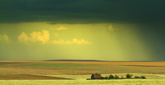Wash Away Our Sorrows (Buddha's Ghost) Tags: thunderstorm storm rain barn farm bigcountry clouds wheat buddhasghost