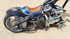 2006 Harley custom (twm1340) Tags: davidson motorcycle custom hd hog samsung galaxy a50 sma505u