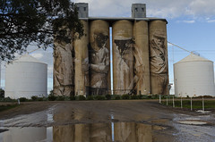 'Upon reflection' (Bev-lyn) Tags: silo water art wimmera australia outdoors