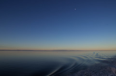 Late moon (soniamarmen) Tags: blue hour landscape water river stlawrence quebec canada sunrise moon waves ripples