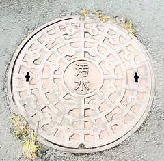 Access cover, Izu Oshima (blondinrikard) Tags: