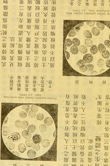 This image is taken from Page 8 of The principles and practice of medicine (Medical Heritage Library, Inc.) Tags: therapeutics clinical medicine diagnosis rcplondon ukmhl medicalheritagelibrary europeanlibraries date1910 idb24907194