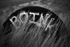 Boink in the Grass (JasonCameron) Tags: monochrome black white bw utah west desert roam wander sights tire grass graphiti