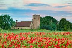 St James' Church Poppy Afterglow (Julian Barker) Tags: st james church swarkestone derby derbyshire east midlands england great britain uk europe poppy poppies field red sunset dusk rural holy canon dslr 5d mkii julian barker
