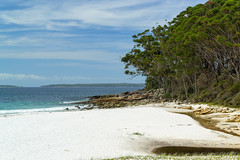 Greenfield's Beach (fate atc) Tags: australia beach greenfieldsbeach jervisbay nsw shoalhaven vincentia water trees whitesand