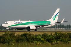 PH-HZB (PlanePixNase) Tags: amsterdam ams eham schiphol planespotting airport aircraft transavia boeing 737 b738 737800