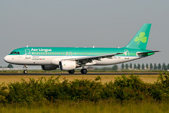 EI-DEL (PlanePixNase) Tags: amsterdam ams eham schiphol planespotting airport aircraft aerlingus airbus 320 a320
