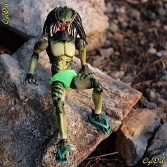 №633 (OylOul) Tags: oyloul 2019 q3 july 16 action figure hottoys predator