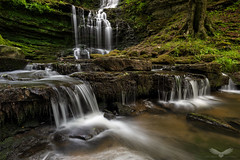 Scaleber Force (Andy Davis Photography) Tags: scaleberforce yorkshiredales waterfall windy river woods rocks summer canon
