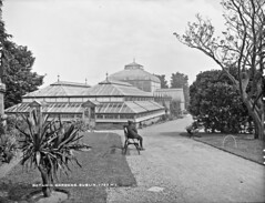 A visit to the Botanic Gardens (National Library of Ireland on The Commons) Tags: robertfrench williamlawrence lawrencecollection lawrencephotographicstudio thelawrencephotographcollection glassnegative nationallibraryofireland botanicgardens glasnevin dublin greenhouses bench strawboater thebots