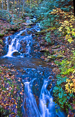 Creek, Great Smoky Mountains National Park (klauslang99) Tags: klauslang nature naturalworld northamerica national great smoky mountains park fall autumn creek water