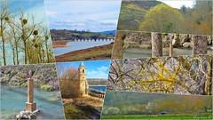 POR LA ORILLUCA DEL EBRO (Angelines3) Tags: nwn nubes naturaleza rio embalsedelebro valles árboles agua
