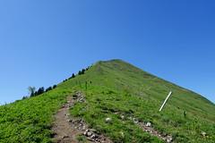 Hike to Le Môle (*_*) Tags: hiking mountain montagne nature randonnee summit sommet trail sentier walk marche europe france hautesavoie 74 chablais cluses savoie 2019 spring printemps afternoon june lemole