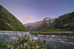 The Alpine Pass (petterikari) Tags: alps river stream mountains france