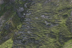 06071915 Benwee Hd-Príosún (Philip D Ryan) Tags: ireland comayo benweehead stonefield anpríosún cliffs wildatlanticway