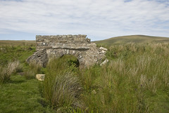 06071950 Sranataggle (Philip D Ryan) Tags: ireland countymayo sranataggle bog wildatlanticway stonebridge rushes