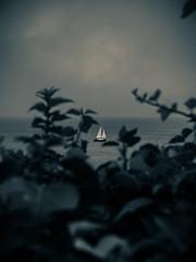 Point Of View (walden.gothere) Tags: sea seashore blackandwhite blackwhite bw bretagne colors canon canonftql nikon nikond80 nikkor nikkor35mm nature nocolor view boat f18 film france frenchphotographer