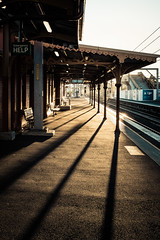 ...morning light... (Utopia_Seeker73) Tags: sydney fujix100f x100f fujifilm winter ilovesydney sydneylife instagram landscapephotography landscape color sky sydneyaustralia green discoversydney shadows dusk composition fujicolor x100 fujilens fuji23mmf2 fujixseries fujifilmx100f