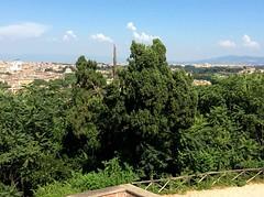 Roma-2019_9831 (Manohar_Auroville) Tags: rome roma italia holidays vacanze amici food cibo trastevere luigi fedele manohar