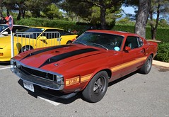 FORD Mustang Fastback Shelby GT350 - 1970 (SASSAchris) Tags: ford mustang fastback shelby voiture américaine 10000 tours castellet circuit ricard gt350 httt htttcircuitpaulricard htttcircuitducastellet musclecar 10000toursducastellet