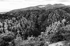 Chiricahua National Monument Landscape (rschnaible (Off Back Soon)) Tags: chiricahua national monument arizona us usa outdoor landscape mountains bw black white photography monotone