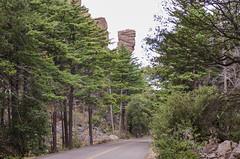 Bonita Canyon Drive (rschnaible (Off Back Soon)) Tags: chiricahua national monument arizona us usa outdoor landscape mountains bonita canyon forest trees
