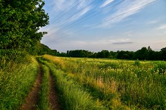 If there's a will, there's a way.... (zaw.naing) Tags: germany deutschland landscape nikon d850 landschaft roesrath nrw