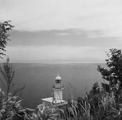 June, 2019. Hokkaido JP (Coe___) Tags: analogphotography blackandwhitefilm rolleiflex