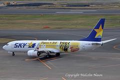 B737 JA73NR SKYMARK special colours 2 (shanairpic) Tags: jetairliner passengerjet b737 boeing737 tokyo haneda skymark specialcolours n73nr